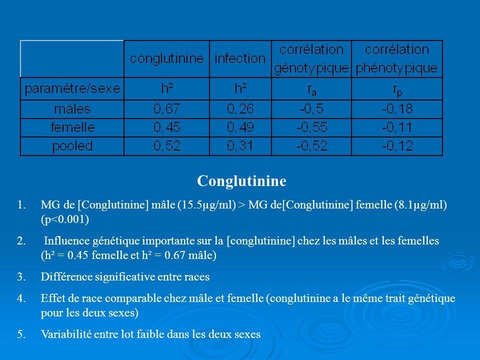 Conglutinine MG de [Conglutinine] mâle (15.5µg/ml) > MG de[Conglutinine] femelle (8.1µg/ml) (p<0.001)